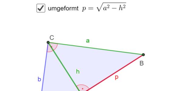 Ü Gleichungen im rechtwinkligen Dreieck ermitteln (Ma 8)