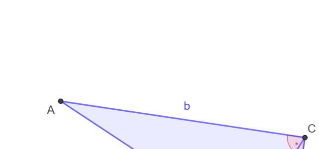 Ü Berechnungen im rechtwinkligen Dreieck (Ma 8)